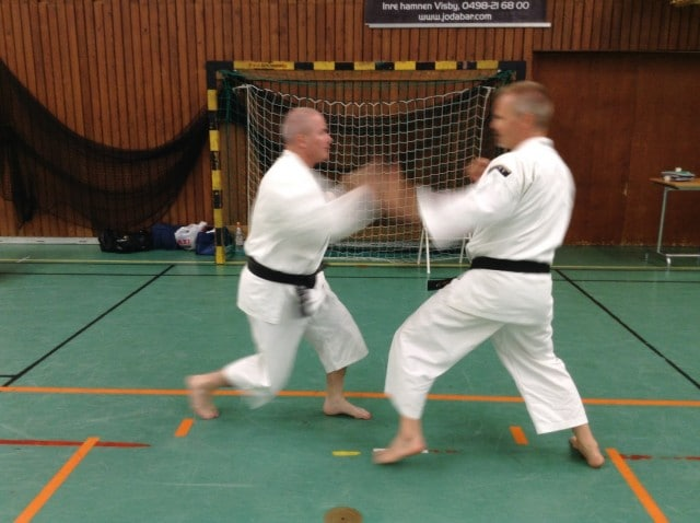 Anders och Stefan tränar explosiv embu.